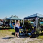 Plant Sale at Fun Day 2019